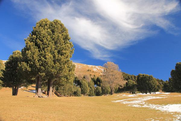 Wanderung rund um den Monte Pic auf über 2000 m an der BaumgrenzeSt. Christina -- 23. November 2014