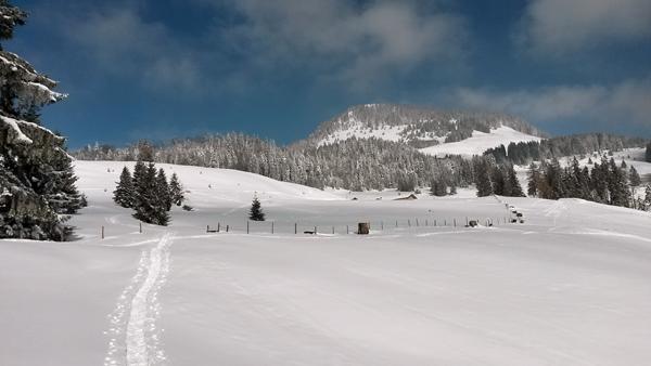 Schneeschuhwanderung rund um dem Spitzstein