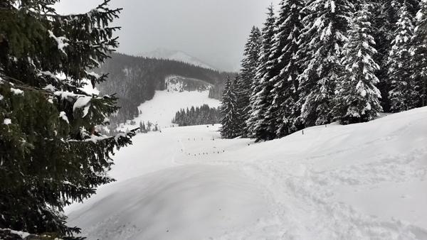 Aufstieg auf den Pfeifferberg