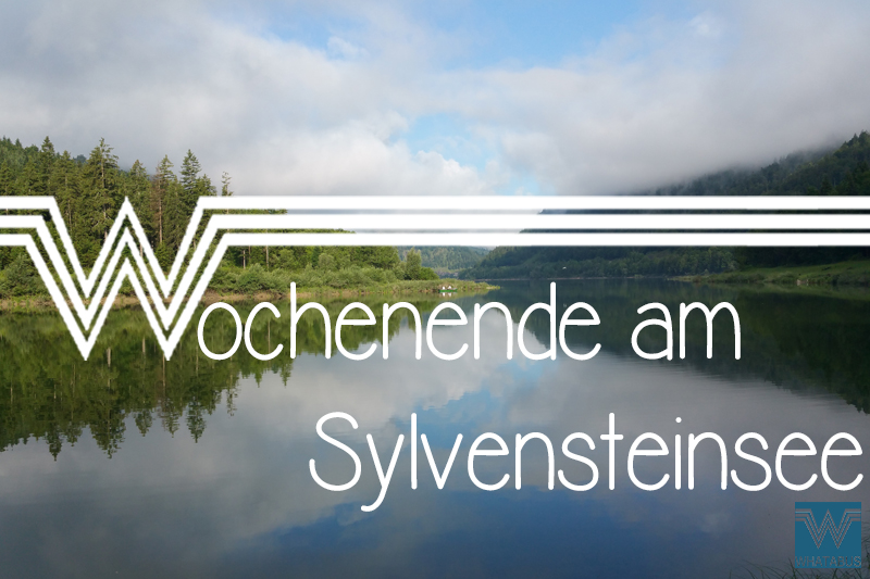 Thumbnail_Video_Sylvenstein